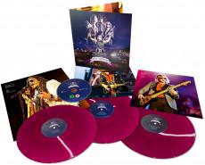 LP/DVD / Aerosmith / Rocks Donington 2014 / Vinyl / Coloured / 3LP+DVD