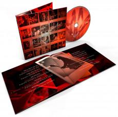 CD / Cornell Chris / No One Sings Like You / Digisleeve