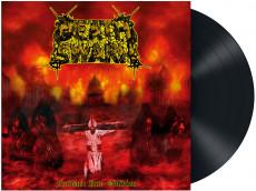 LP / Deathswarm / Forward Into Oblivion / Vinyl
