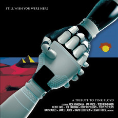 CD / Various / Still Wish You Were Here / Tribute To Pink Floyd