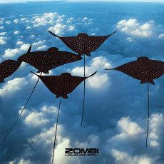 LP / Zombi / Liquid Crystal / Vinyl