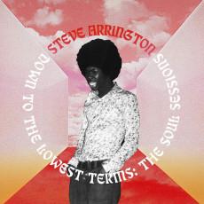 LP / Arrington Steve / Down To The Lowest Terms: the Soul S.. / Vinyl