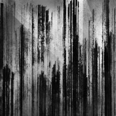 CD / Cult Of Luna / Vertikal / Digipack