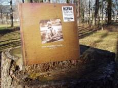 LP / Insania / Zapal dům poraž strom / Vinyl
