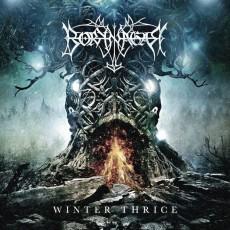 CD / Borknagar / Winter Thrice