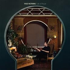 LP / Wild Nothing / Life Of Pause / Vinyl