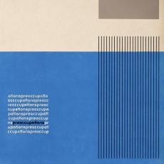 LP / Preoccupations / Preoccupations / Vinyl