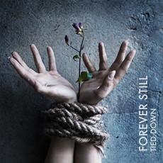 CD/DVD / Forever Still / Tied Down / CD+DVD / Digipack
