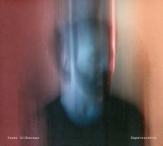 LP / Silberman Peter / Impermanence / Vinyl