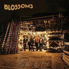2LP / Blossoms / Blossoms / Vinyl / 2LP