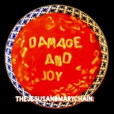 LP / Jesus & Mary Chain / Damage and Joy / Vinyl