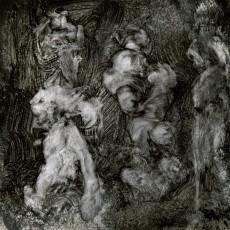 LP / Lanegan Mark & Garwood Duke / With Animals / Vinyl