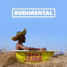 2LP / Rudimental / Toast To Our Differences / Vinyl / 2LP