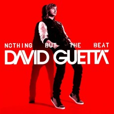 2LP / Guetta David / Nothing But The Beat / Vinyl / Coloured / 2LP
