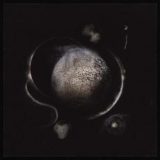 LP / Enthroned / Cold Black Suns / Vinyl