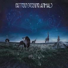 2LP/CD / Pattern-Seeking Animals / Pattern-Seeking.. / Vinyl / 2LP+CD