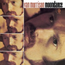 LP / Morrison Van / Moondance / Coloured / Vinyl