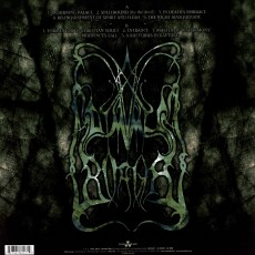 LP / Dimmu Borgir / Enthrone Darkness Triumphant / Vinyl