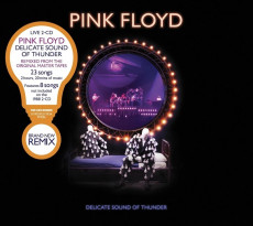 2CD / Pink Floyd / Delicate Sound of Thunder / 2CD / Remastered 2020