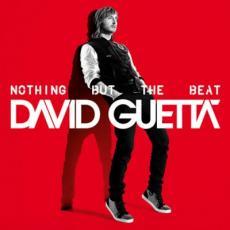 2LP / Guetta David / Nothing But The Beat / Vinyl / 2LP