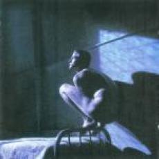CD / Gabriel Peter / Birdy / OST
