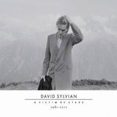 2CD / Sylvian David / Victim Of Stars1982-2012 / 2CD