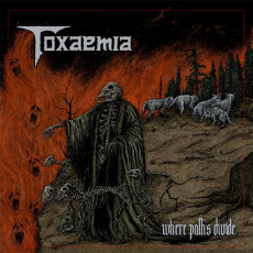 CD / Toxaemia / Where Paths Divide