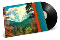 4LP / Tame Impala / Innerspeaker / 10th Anniversary / Vinyl / 4LP