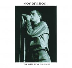 LP / Joy Division / Love Will Tear Us Apart / Vinyl