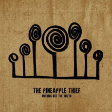 2LP / Pineapple Thief / Nothing But the Truth / Live / Vinyl / 2LP