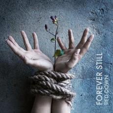 CD / Forever Still / Tied Down