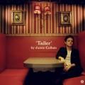 2CDCullum Jamie / Taller / 2CD