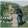LPCooke Sam / Wonderful World Of Sam Cooke / Vinyl