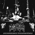 LP / Belphegor / Necrodaemon Terrorsathan / Reedice 2020 / Vinyl