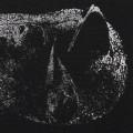 LP / Demon Head / Viscera / Vinyl / limited