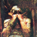 LP / Anaal Nathrakh / Codex Necro / Vinyl / Reedice 2021