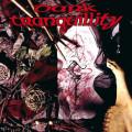LP / Dark Tranquillity / Mind's I / Vinyl / Reissue