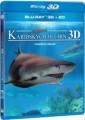 3D Blu-RayBlu-ray film /  Tajemství karibských hlubin / Adventure Carribean / 3D