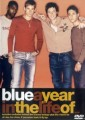 DVDBlue / Years In The Life Of Blue