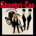 2LPShangri-Las / Leader Of The Pack / Vinyl / 2LP / 180g