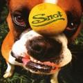 LPSnot / Get Some / Vinyl