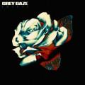 LPGrey Daze / Amends / Vinyl