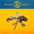 LPSteve'n'seagulls / Another Miracle / Vinyl
