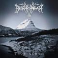CD / Borknagar / True North