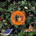 LP / Don Broco / Amazing Things / Vinyl