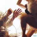 CD / Lump / Animal