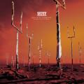 2LPMuse / Origin Of Symmetry / Anniversary Remixx / Vinyl / 2LP