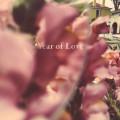 CD / Beta Radio / Year of Love