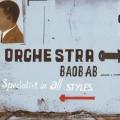 2LPOrchestra Baobab / Specialist In All Styles / Vinyl / 2LP