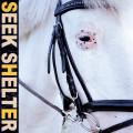 CDIceage / Seek Shelter